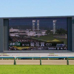 京都競馬場にて 菊花賞!