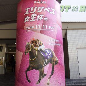初の京都競馬場へ行って来ました!(^^)♥️現場で見るのは迫力満点でした✨